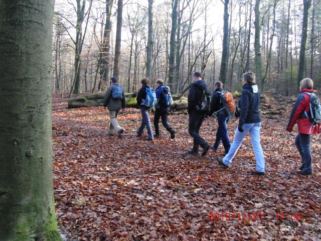 Toen wij het bos bij oud groevenbeek indoken